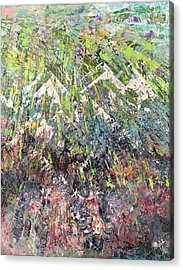 Mountain Of Many Colors Acrylic Print