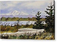 Mountain Outlook Acrylic Print by James Williamson