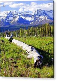 Mountain Splendor Acrylic Print by Marty Koch