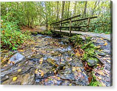Mountain Stream #2 Acrylic Print