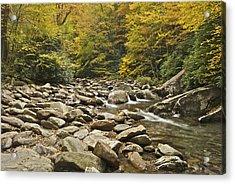 Mountain Stream  6058 Acrylic Print by Michael Peychich