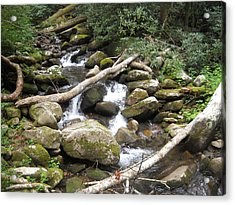 Mountain Stream Acrylic Print by Christy Verstoep
