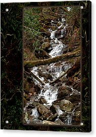 Mountain Stream Acrylic Print by Robert Clayton