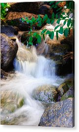 Mountain Stream Wasatch Mts. Utah Acrylic Print by Utah Images