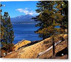 Mountain Thru The Pines Acrylic Print