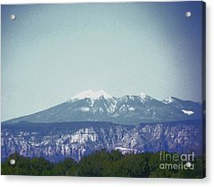Mountain View Acrylic Print by Debbie Wells