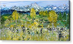 Mountain View Acrylic Print by Evelina Popilian