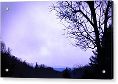 Mountain Vista Acrylic Print