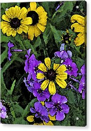 Mountain Wildflowers Acrylic Print by Debra Wilkinson
