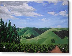 Mountains And  Vineyard Acrylic Print