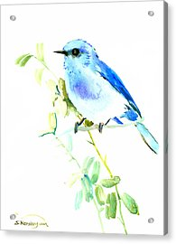 Mountains Bluebird Acrylic Print by Suren Nersisyan