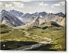 Mountains In Denali National Park Acrylic Print