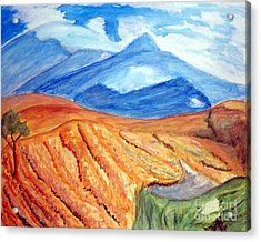 Mountains In Mexico Acrylic Print by Stanley Morganstein