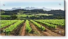 Acrylic Print featuring the mixed media Mountains Of Montserrat Catalunya by Gina Dsgn