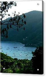 Mountainside Coral Bay Acrylic Print by Robert Nickologianis