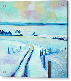 Mountpleasant Winter Acrylic Print by Stephanie  Maclean