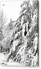 Mourn The Winter Acrylic Print