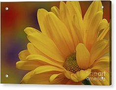 Movement In Yellow Acrylic Print