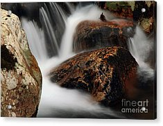 Acrylic Print featuring the photograph Moving Along by Darren Fisher