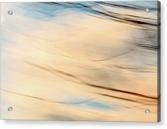 Moving Branches Moving Clouds Acrylic Print