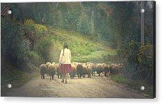Moving To Greener Pastures Ankawasi Peru Acrylic Print