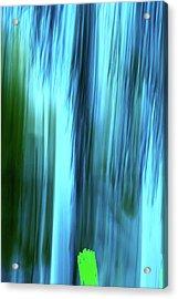 Moving Trees 37-15portrait Format Acrylic Print