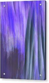 Moving Trees 37-36 Portrait Format Acrylic Print