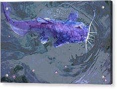 Mprints - Big Cat Acrylic Print