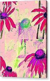 Mprints - Daisies 1 Acrylic Print