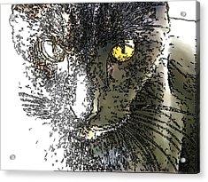 Mprints - Bad To The Bone Acrylic Print
