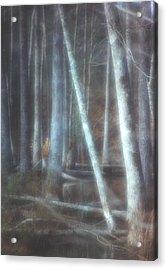 Mprints -winter Beauty Acrylic Print