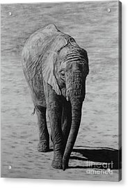 Mpumi Acrylic Print