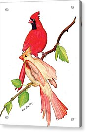 Acrylic Print featuring the painting Mr. And Mrs. Cardinal by Anne Beverley-Stamps