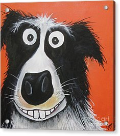Mr Dog Acrylic Print