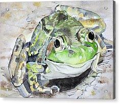 Mr Frog  Acrylic Print