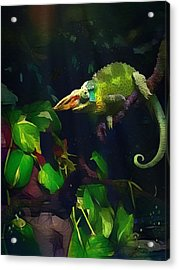 Acrylic Print featuring the photograph Mr. H.c. Chameleon Esquire by Sharon Jones