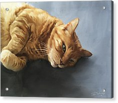 Mr.snuggles Acrylic Print