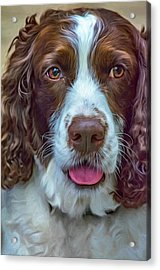 Ms Kaya 3 - Paint Acrylic Print by Steve Harrington