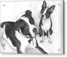 Ms Proutys Dogs Acrylic Print by Katie Alfonsi