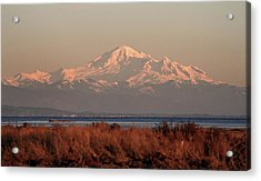 Mt Baker At Sunset Acrylic Print