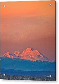 Mt Baker From Edmonds Harbor Acrylic Print by Alvin Kroon