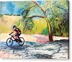 Mt. Bike With Tree Shadows Acrylic Print by Colleen Proppe