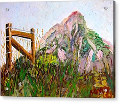 Mt. Crested Butte And Fence Acrylic Print by Kathryn Barry