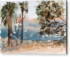 Mt Field Gum Tree Silhouettes Against Salmon Coloured Mountains Acrylic Print