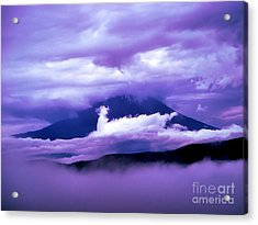 Mt Fuji Acrylic Print by Yvonne Johnstone