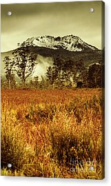 Mt Gell. Tasmania National Park Of Franklin Gordon Acrylic Print by Jorgo Photography - Wall Art Gallery