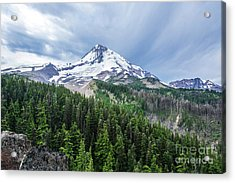 Mt Hood From Cloud Cap Acrylic Print by Linda Steider