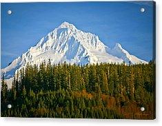 Mt Hood In Winter Acrylic Print by Albert Seger