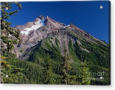 Mt. Jefferson From The Whitewater Trail Acrylic Print