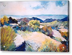 Acrylic Print featuring the painting Mt Lemmon View by M Diane Bonaparte